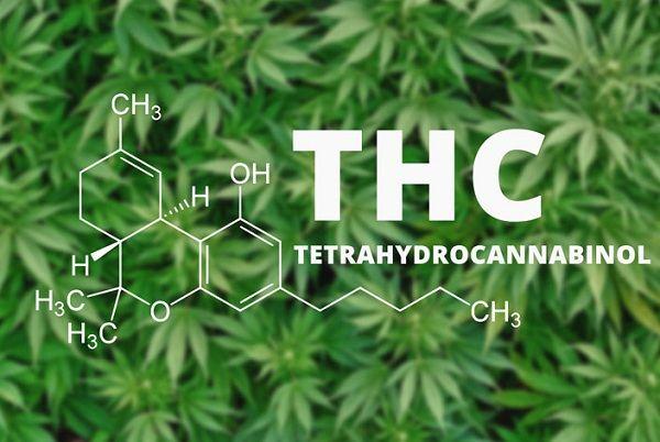 Quantity of THC