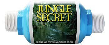Jungle Secret Water